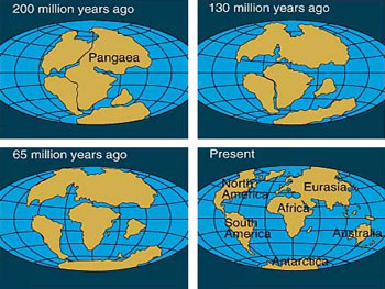 A diagram showing how the continents drifted apart
