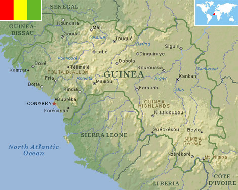 how to find ngos in guinea